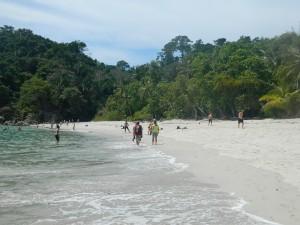 beachin blog