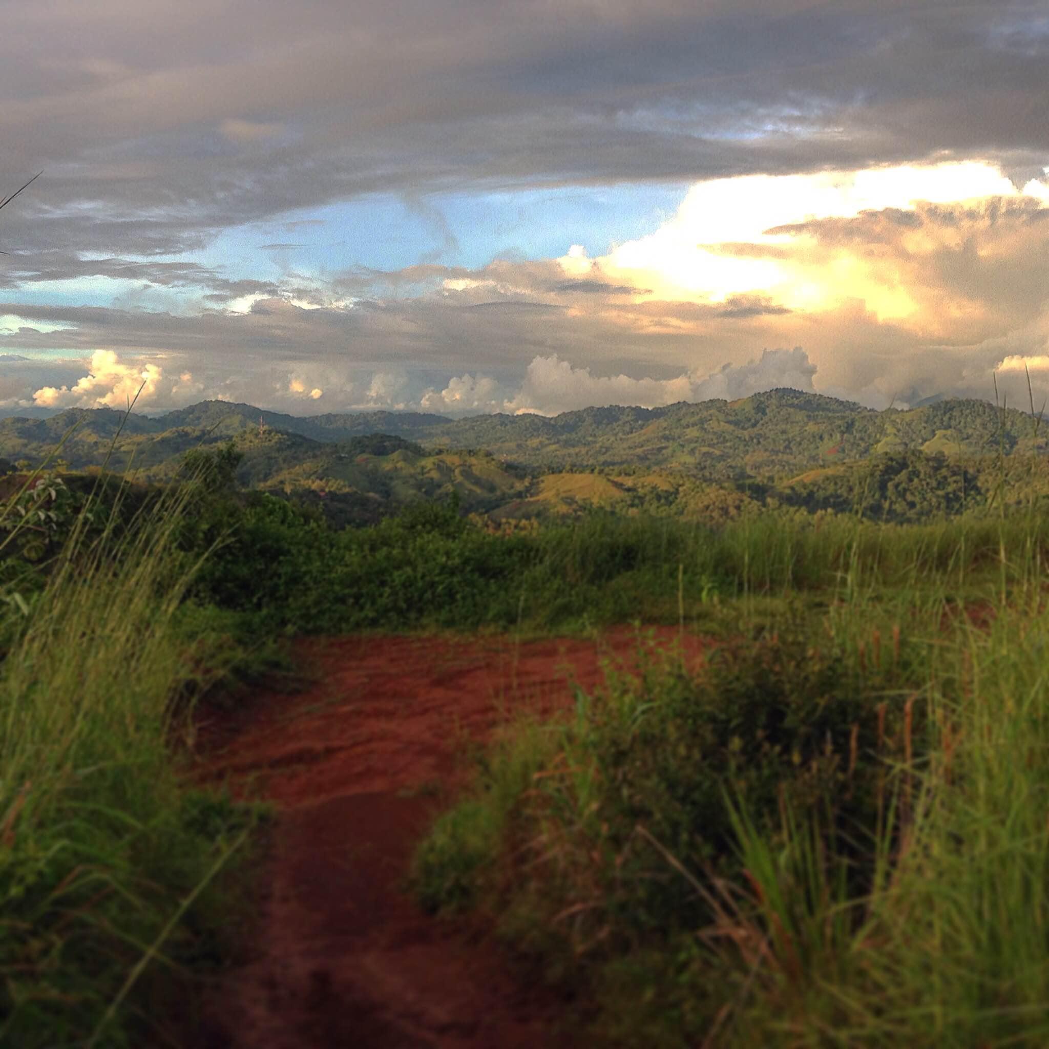 Purified Costa Rica