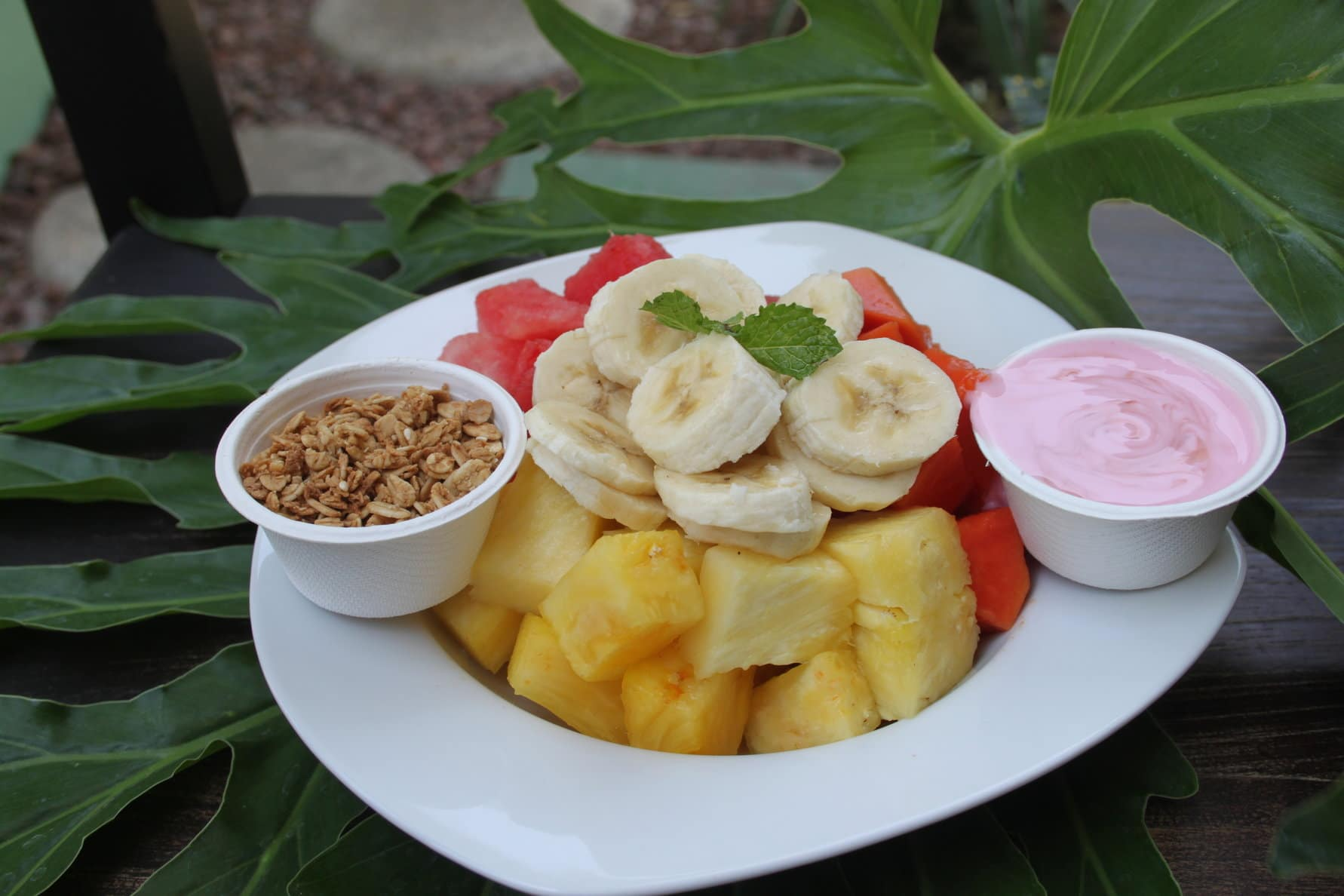 fruit and yogurt at Room2Board