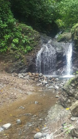 Hidden Waterfalls near Jaco