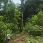 The hike to the waterfall